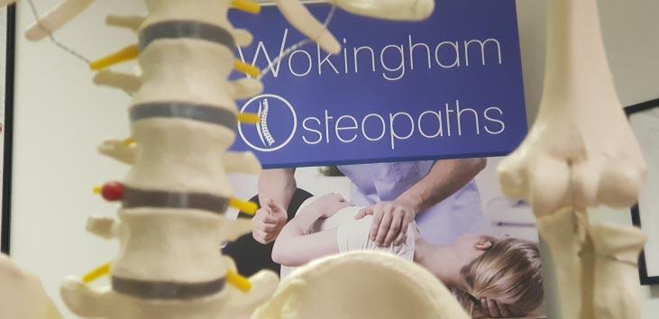 Pelvis-with-focus-on-Wokingham-Osteopaths-Logo